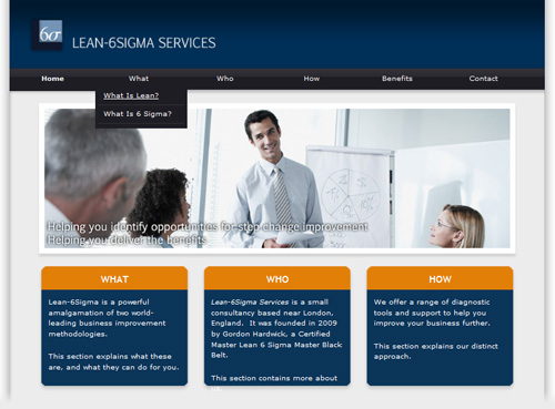 Lean 6 Sigma services screenshot