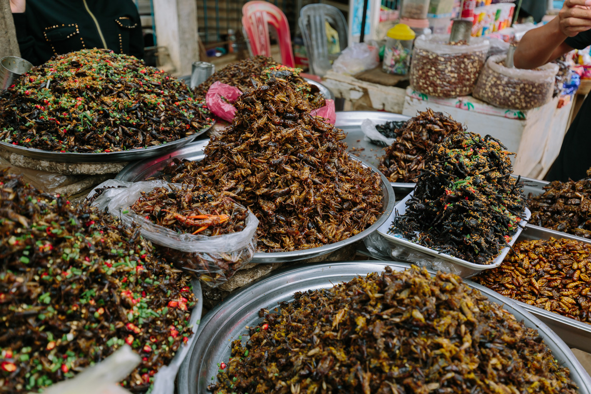 Local insect based snacks in Phon Phen