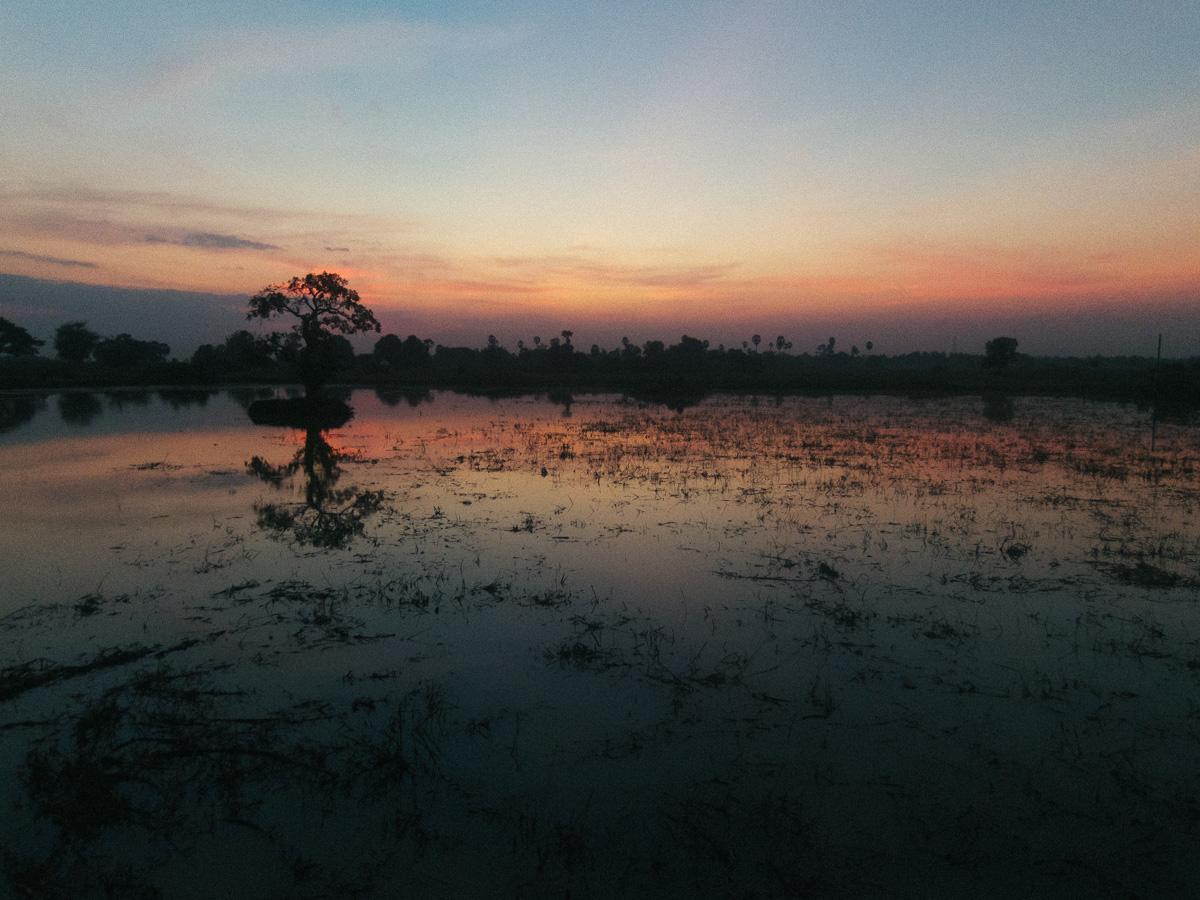 Angor Watt temple at sunrise