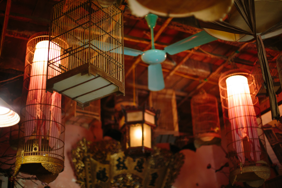 Bird cages and fans