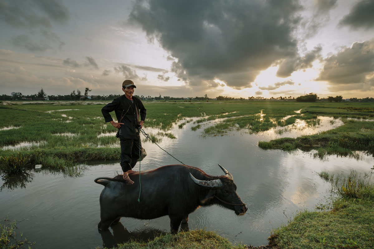 A Vietnamese farmer stands proudly on his water buffalo as the sun sets. I wanted to capture their relaxed attitude reflecting the tranquillity of the rice fields that surround them.
